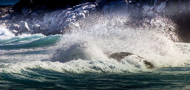 Vende hacer surf en Hawai, no vendas el avión