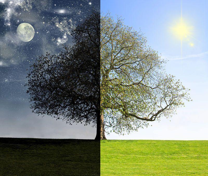 Un cambio de web como la noche y el día